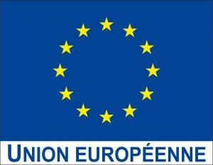 Drapeau-Union-europeenne-avec-logo-UE_large