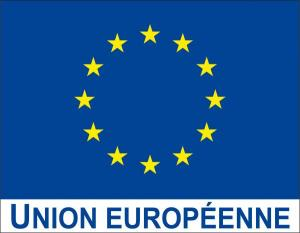 Drapeau-Union-europeenne-avec-logo-UE_large